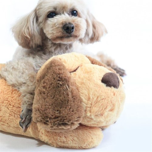 Snuggle Puppy for Pet