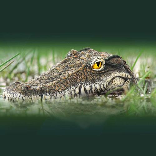Gartengerate Crocodile Floating Lure for Garden Decoration