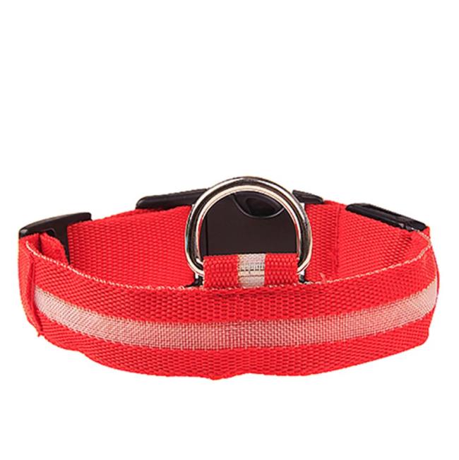 Premium Led Dog Collar