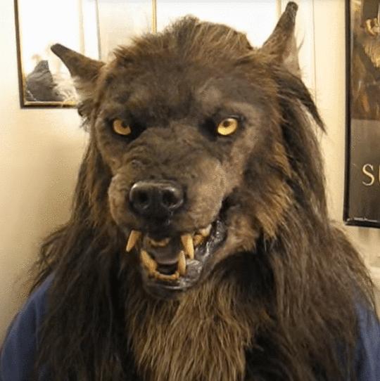 Werewolf Headwear Costume Mask