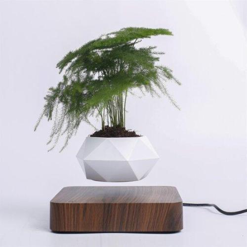 Levitating plant pot