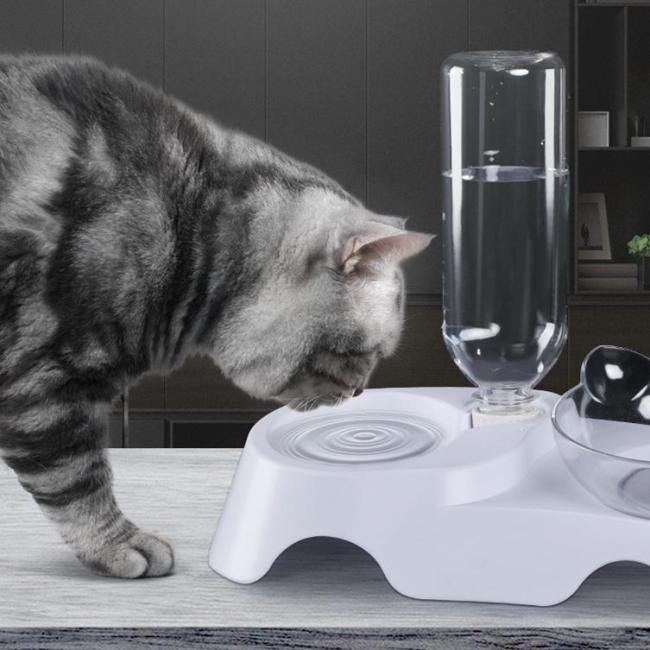 Anti-Vomiting Orthopedic Cat Bowl