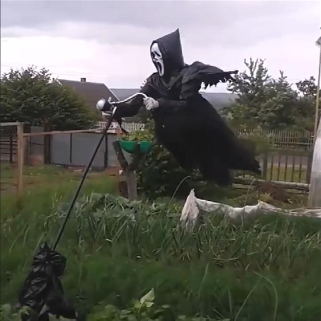 Screaming Scarecrow