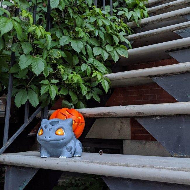 Halloween Pumpkin-Pumpkasaur-Pokemon