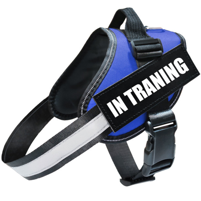 THE PERSONALIZED NO PULL HARNESS
