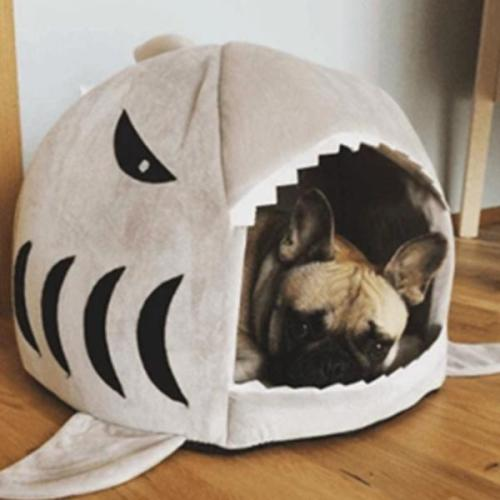 Super Cute Shark Bed Pet House