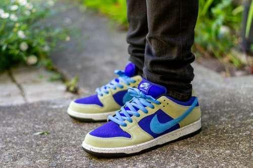 Nike Dunk Low SB ACG Celadon