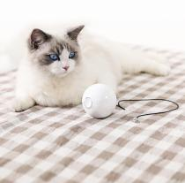 2020 Smart Automatic Interactive Cat Ball With 360° Self Rotating, Build-in Red Laser & Metal Bell 🔥50%折扣🔥
