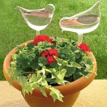 3 Pcs Self-Watering Plant Glass Bulbs