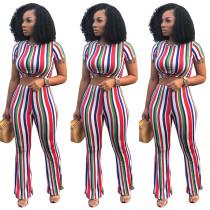 Blue Multicolor Stripes Crop Top with Pant Set