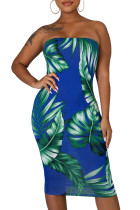 Blue Tropical Print Tube Bodycon Dress LC221291-5
