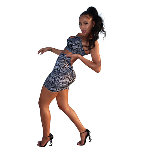 Gray Snake Print Crop Top and Skirt Set TQS710028-11