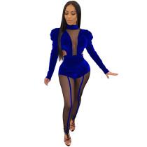 Blue Velvet Mesh Top with Pant Set TQS710022-5