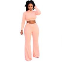 Pink Crop Top with Pant Set