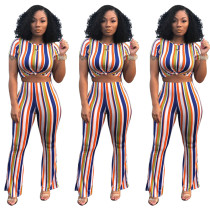 Orange Multicolor Stripes Crop Top with Pant Set