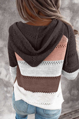 Brown Combo Block Knit Hoodie LC253742-17