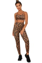 Brown Leopard Sports Bra and Legging Set LC26074-20