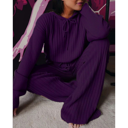 Dark Purple Loose Fit Hooded Long Sleeve Pant 2pcs Set TQK710182-35