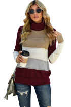 Wine Highlight Colorblock Turtleneck Pullover Sweater LC272667-3