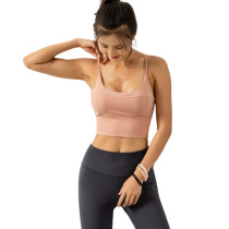 Pink Workout Shockproof Fitness Yoga Bra Top TQE19074-10