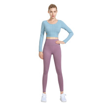 Lake Blue 2pcs Yoga Set Long Sleeve Crop Top with Purple Pant TQE00096-110-8