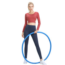 Flame Red 2pcs Yoga Set Long Sleeve Crop Top with Gray Blue Pant TQE00096-109-4