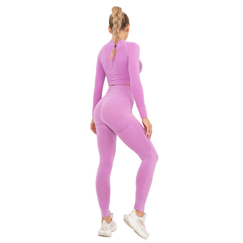 Rosy Seamless Long Sleeve Yoga Sports Set TQE00135-6