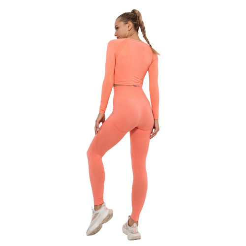 Rustic Coral Seamless Long Sleeve Yoga Sports Set TQE00135-84
