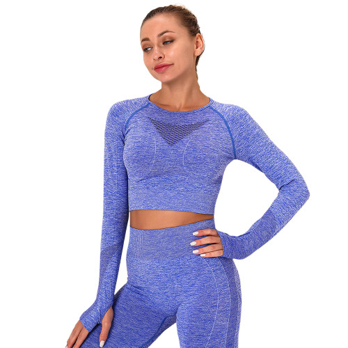 Blue Long Sleeve Seamless Yoga Top TQE180189-5