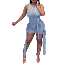 Light Blue Mesh Sleeveless Clubwear Bodycon Dress TQK310559-30