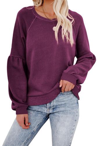 Purple Raglan Patchwork Sleeve Pullover Sweatshirt LC2537875-8