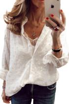 White Turn-down Neck Swiss Dot Texture Sheer Shirt LC2551576-1