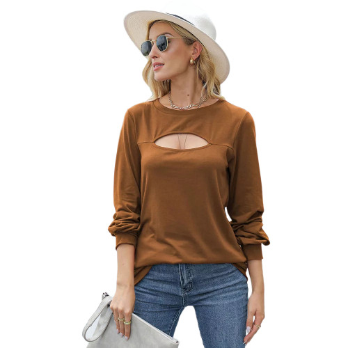 Brown Hollow Out Lantern Sleeve Round Neck Tops TQK210827-17