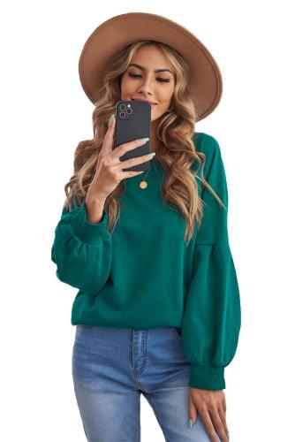 Green Raglan Patchwork Sleeve Pullover Sweatshirt LC2537875-9