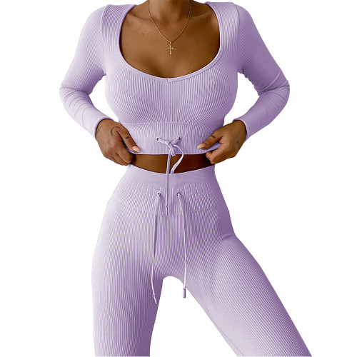 Light Purple Knitted Seamless Long Sleeve Yoga Set TQK710414-38