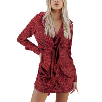 Red Leopard Print Tie Waist Long Sleeve Mini Dress TQK310690-3