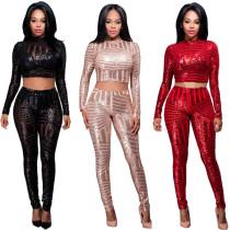 Bodycon Sequin Suits Crop Top Slinky Pants YDL269