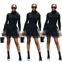 Unique Women Suits High Neck Long Top Mesh Skirt YYZ817