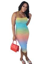 Rainbow Zebra Skinny Cami Dress OMY8036