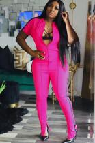 Pink Solid Color Side Stripes Front Zip-up Blouse & Skinny Pants Sporty Sets DN8367