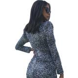 Leopard Print Deep V Neck Sexy Club Mini Dress M952