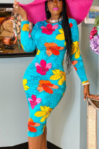 Blue Casual Polyester Floral Long Sleeve Round Neck All Over Print Mid Waist Long Dress CCY8616