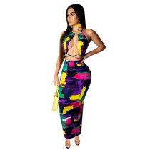 Newest Backless Women Printing Halter Neck Dress SY8327