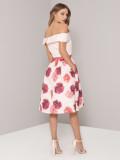 Off Shoulder Layers Rose Graphic Random Print Ruffles Casual DressJLX7003