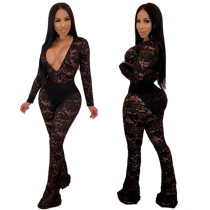 Club Lace Perspective V Collar Bodycon Jumpsuits JLX9358