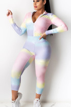 Pink Blue Casual Polyester Long Sleeve Hoodie Long Pants Sets YY5201