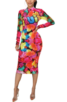 Casual Modest Floral Long Sleeve Round Neck Midi Dress SDD9444