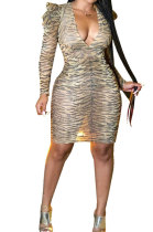 Sexy Leopard Long Sleeve Tight Package Hip Skirt V Neck Club Womenswear Dress QY5021