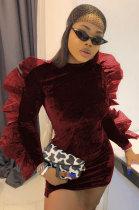 Pleuche Net Yarn Round Neck Long Sleeve Sexy Dress CCN1833