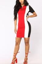 Casual Sporty Long Sleeve Spliced Mini Dress ZZS8327